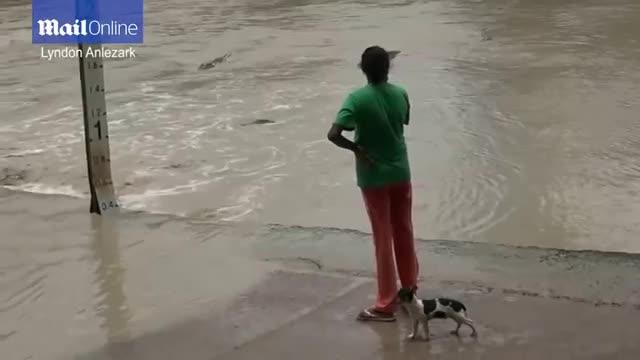 Giải trí - Clip: Bị nhăm nhe tấn công, cô gái rút dép tông dọa cá sấu và cái kết