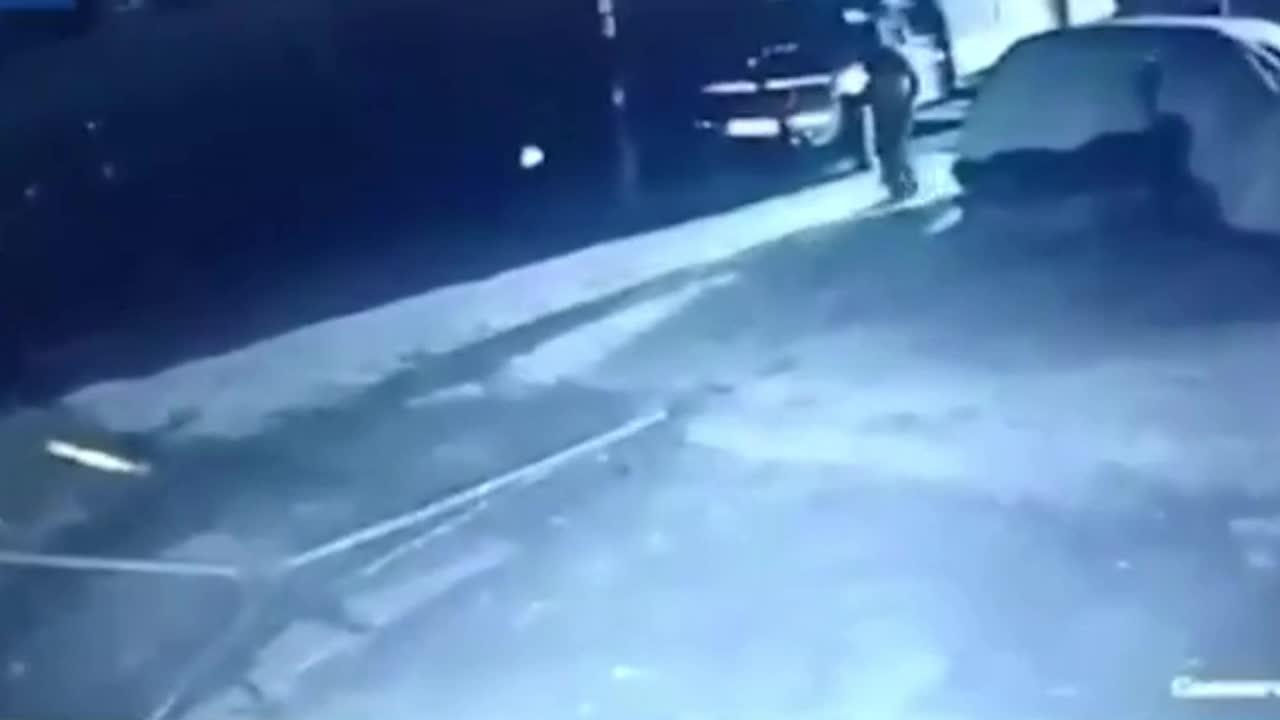 Giải trí - Clip: Người đàn ông lao ra đối đầu sư tử cứu đàn bò và cái kết khó tin