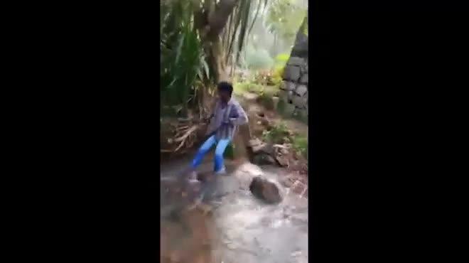 Giải trí - Clip: Người đàn ông dùng tay không bắt rắn hổ mang chúa khổng lồ